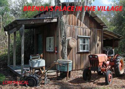 Village20