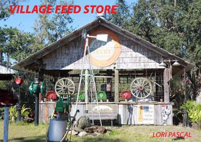 Village40
